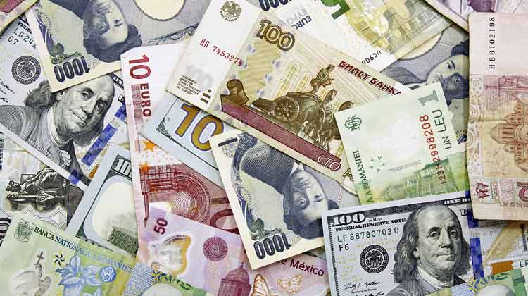 Purchasing Foreign Currency for Profit